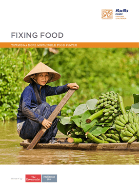 Fixing Food : Towards a More Sustainable Food System