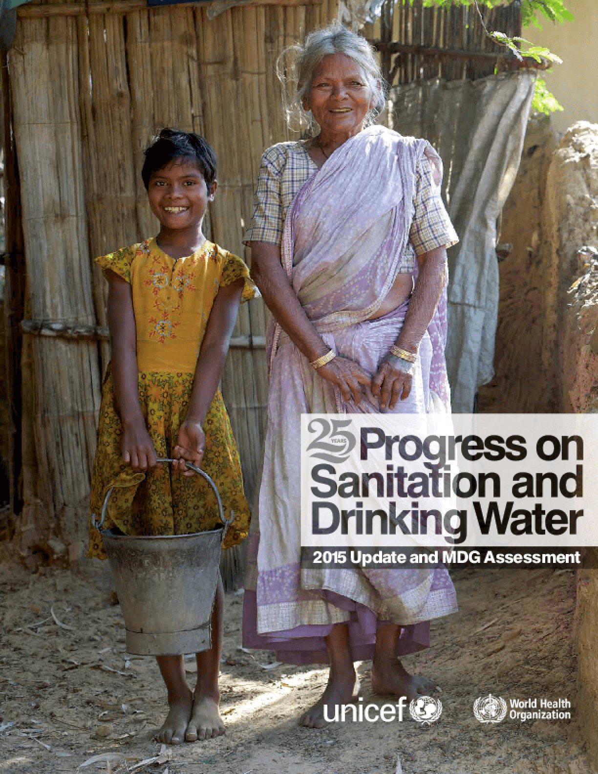 Progress on Sanitation and Drinking Water: 2015 Update and MDG Assessment