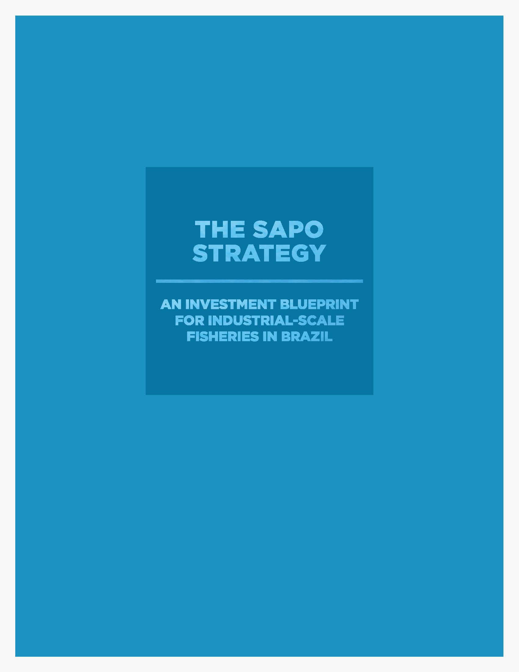 The Sapo Strategy : An Investment Blueprint for Industrial-Scale Fisheries in Brazil